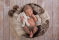 Nyfodd_fotograf_Michaela_Edlund_newborn_william-15 kopiera