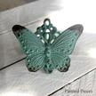 Butterfly - Knopp