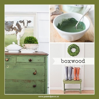 Boxwood - Milk Paint 230g
