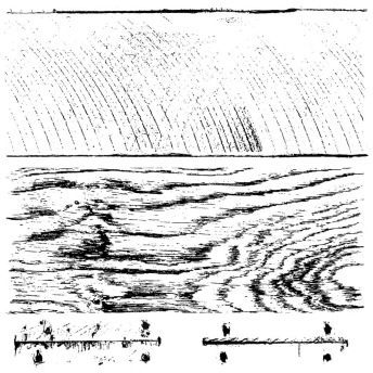 Barnwood Planks - dubbel - IOD Stämpel 2 st