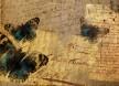 Butterfly Letter