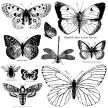 Butterflies - IOD Stämpel