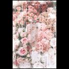 Angelic Rose Garden ca 50x75cm