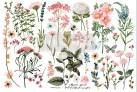 Re Design Décor Transfer Botanical Paradise - Mått: ca 30x15cm