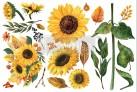 Re Design Décor Transfer Sunflower Afternoon - Mått: ca 30x15cm