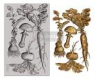Re Design Decor Mould - Vintage Roots
