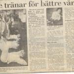RÖRANDE SYDSVENSKAN 1987-5 001