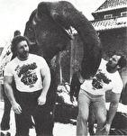 RÖRANDE 1980-66,GIGANTERNAS KAMP