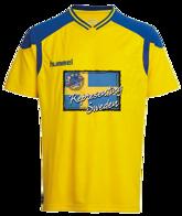 Sweden T-shirt Gul