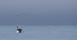 fiskebåt och ejder16mars