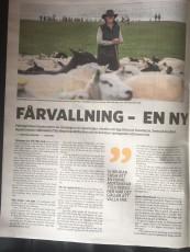 Foto: Skånska dagbladet