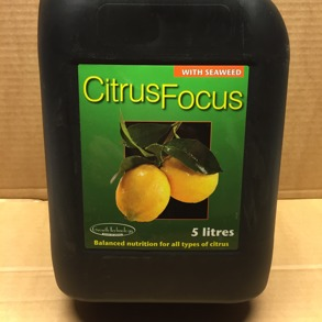 Citrus Focus Citrusnäring 5 l - Citrus Focus 5l