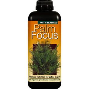 Palmnäring - Palm Focus 1L - Palmfocus