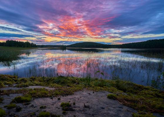 Många svenskar associerar Finland med den vackra naturen. Foto: Tommi Saltiola / Unsplash.