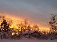 åsaÅsa Emanuelsdotter Lindmark