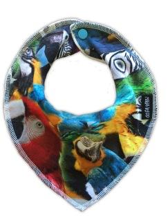 Rea Dregglis Parrot - Dregglis Parrot