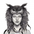 Lady Owl kdillustrationdesign