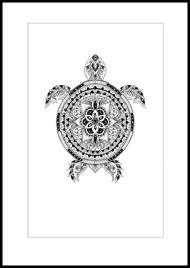 Patternful turtle