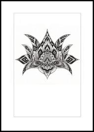 Patternful Lotus