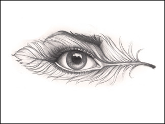 Eye of a feather
