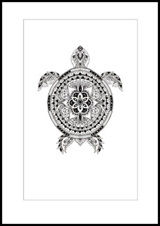 Patternful turtle
