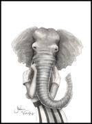 Elephant woman