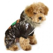 Hundovreall cool stuff brun