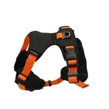 Sportsele Emmi - Emmi orange S hals: 16-53cm bröst: 40-55cm