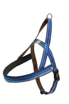 Dog T Harness Active - Blå Stl.0, 31cm bröstvidd, 40-46cm bringa