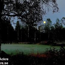 Hagmark, Stensjöby, Småland  _BAC5234  1280 72dpi