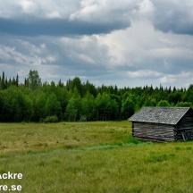 Ängslada, Lappland_BIA1116 1280 72dpi