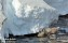 Ren, Lappland_BAC9141 1280 72dpi