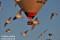 Uppskrämda fåglar pga omdömeslöst beteende, Hornborgasjön nr, Västergötland_BAC7978 1280