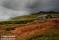 Säterhus, Rondane, Norge_BIA1651+  1280 72dpi