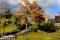 Hösten gör sitt intåg _BAC3725 1280 72dpi