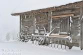 Bilder på Äskhults by, kulturreservat i Kungsbacka