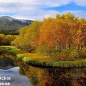 Atna, Rondane, Norge_BAC7506_1943 1280