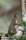 _BAC5988 Ekorre, Halland 1280 72dpi