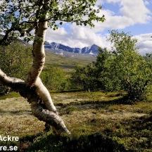 _BAC2687 Rondane, Norge 1280 72dpi