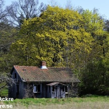 _BAC5355 Gammalt torp vid Timmervik, Dalsland 1280 72dpi