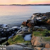 Näsbokrok naturreservat, Halland_BAC3314 1280 72dpi