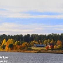 Österdalen, Dalarna _20080926_0484_ Öster om sjön, Dalarna 1280 72dpi