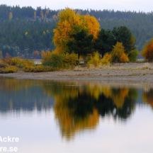 Österdalen, Dalarna _20080927_0485_ 1280 72dpi