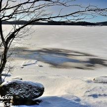 Gäddevik naturreservat, Halland, 1280 72dpi_BAC3463