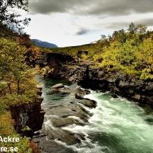 Abiskojokka, Lappland  1280 72dpi_BIA6142_002751