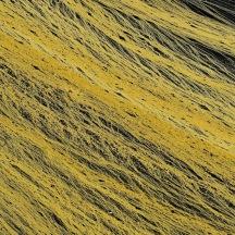 _BAC6632  Dovre, pollenmönster, Norge 1280 72dpi