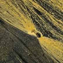 _BAC6623  Dovre, pollenmönster, Norge 1280 72dpi