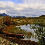 _BAC9752   Dörålen, Rondane, Norge 1280 72dpi