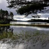 Laxsjön, Närke_BIA7585_005243