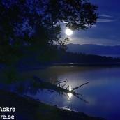 Laxsjön, Närke_BIA7583_005241